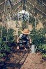 Boy in straw hat working in greenhouse — Stock Photo