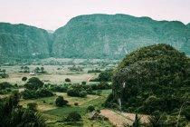 Paisagem incrível de plantações verdes e terras tropicais em fundo de montanhas verdes, Cuba — Fotografia de Stock