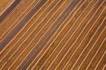 Полосатые поля — стоковое фото