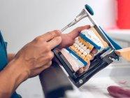 Dental technician holding artificial teeth on holde — Stock Photo