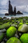 Massi muschiosi in riva al mare — Foto stock