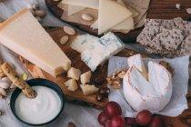 Planches de fromages aux noix et crostini — Photo de stock