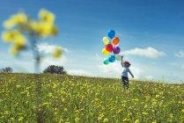 Мальчик дошкольника, ходить на лугу с руку протянутой с красочными шарами — стоковое фото