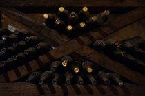 Weinkeller in dunklen hölzernen Regalen voller Flaschen — Stockfoto