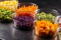 Satz von Plastikschüsseln sortierten vegetarischen Zutaten zur Zubereitung von Speisen — Stockfoto