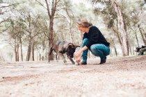 Großer brauner Hund und Herrchen spielen im Wald mit Ball — Stockfoto