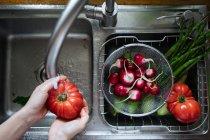 Hände waschen frisches Gemüse im Spülbecken — Stockfoto