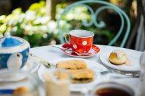 Красная керамическая кружка полька-пунктир на блюдце и кусочки пасты на тарелке на столе в саду — стоковое фото