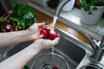 Hände waschen frische Radieschen in Spülbecken — Stockfoto