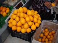 Vendedores que vendem e limpam limões no mercado agrícola — Fotografia de Stock