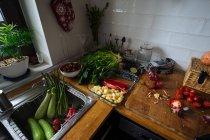 Овочі свіжі на кухні стільницею та раковиною — стокове фото