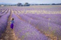 Niña corriendo en el campo de lavanda púrpura - foto de stock