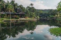 Paisaje de lago tranquilo en parque exótico con edificios orientales tradicionales en el fondo, Nanning, China - foto de stock