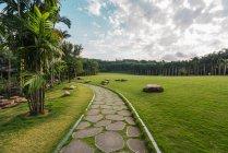 Allée pavée de pierre sur un terrain verdoyant du parc tropical luxuriant de la montagne Qingxiu avec des arbres, Chine — Photo de stock