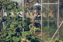 Ragazzo che ascolta musica mentre lavora in serra — Foto stock