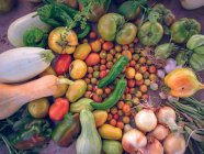 Fresh harvested vegetables on rustic table — Stock Photo