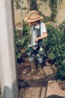 Boy in straw hat and rubber boots watering plants in greenhouse — Stock Photo