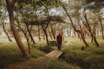 Homem andando na ponte de madeira no caminho no parque verde — Fotografia de Stock