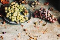 Uve fresche servite in un piatto — Foto stock