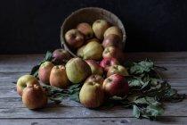 Manzanas maduras frescas y hojas con la cesta en la mesa de madera rústica - foto de stock