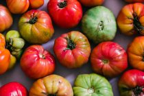 Background of fresh half-ripe green and red tomatoes — Stock Photo