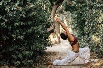 Стройная женщина откидывается назад, занимаясь йогой на аллее в осеннем парке — стоковое фото