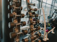 Conjunto de halteres deitados na prateleira do ginásio — Fotografia de Stock