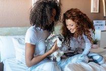 Молодые женщины в постели играют с маленьким кроликом — стоковое фото