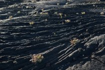 Struttura primo piano di roccia scura ruvida alla luce del sole — Foto stock