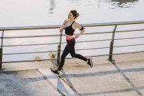 Сверху женщины в спортивной одежде бегают по набережной возле воды в городе — стоковое фото