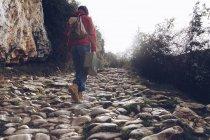 Visão traseira da mulher casual levando caso e andando sobre rochas de fluxo claro de água na natureza — Fotografia de Stock