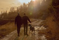 Rückansicht des homosexuellen Paares, das Hände hält und mit Hund auf dem Weg auf dem Hügel an sonnigen Tag — Stockfoto