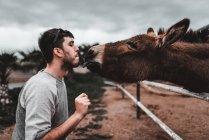 Vue latérale d'un jeune homme tenant une plante verte dans la bouche et donnant au pâturage d'ânes sur le terrain à Lanzarote, îles Canaries, Espagne — Photo de stock