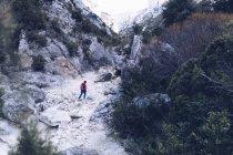 Сверху сзади вид женщины, путешествующей между скальными горами с зелеными растениями — стоковое фото