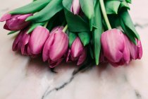 Bunch of fresh pink tulips on marble surface — Stock Photo