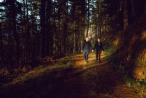Homosexual couple holding hands and walking on way in dark forest in sunny day — Stock Photo