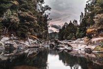 Ciel nuageux au-dessus du lac avec des rives rocheuses et des arbres verts dans la nature — Photo de stock