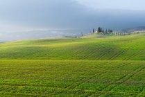 Paisagem pitoresca de campos verdes com casa de campo e árvores sob céu nublado, Itália — Fotografia de Stock