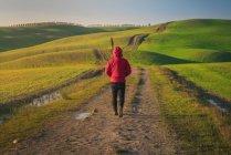 Visão traseira da pessoa de jaqueta andando na estrada rural vazia em majestosos campos verdes da Itália — Fotografia de Stock