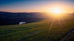 Vista panorámica de campos verdes interminables a la luz del sol al atardecer, Italia - foto de stock