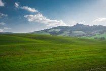 Vue panoramique des champs verts sans fin dans la lumière du soleil lumineuse, Italie — Photo de stock