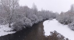 River streaming between snow winter forest — стоковое фото