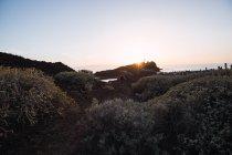 Photographe homme marchant sur le bord de mer au coucher du soleil — Photo de stock