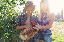 Adolescente chico y chica en camisas a cuadros y pantalones cortos de mezclilla sonriendo y acariciando gallina mientras está de pie cerca de arbustos verdes en el día soleado en la granja - foto de stock