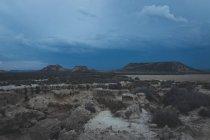 Man standing on stone in desert hills — стокове фото