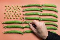 Рука людини рішень квартиру лежав Прапор США з гороху і гороху стручків на лосося фону — стокове фото