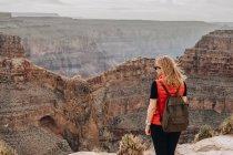 Vue arrière de la femme avec sac à dos admirant la vue pittoresque sur le canyon aux États-Unis — Photo de stock