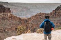 Вид сзади человека с рюкзаком, любуясь живописным видом на каньон в США — стоковое фото