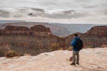 Вид сбоку человека с рюкзаком, любовающегося живописным видом каньона в США — стоковое фото