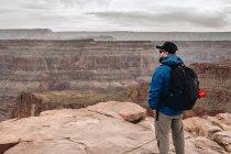 Vue arrière de l'homme avec sac à dos admirant la vue pittoresque sur le canyon aux États-Unis — Photo de stock
